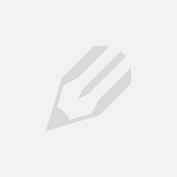 Vismagneet kopen | Magneetvissen kopen in Belgie of Nederland